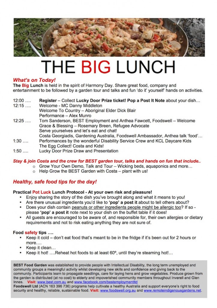 BIG LUNCH PROGRAM R
