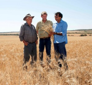 Bill and William Mallard, of Mt View Station, with Bob Vinson (centre), from the Department of Agriculture and Food's Indigenous Landholder Service