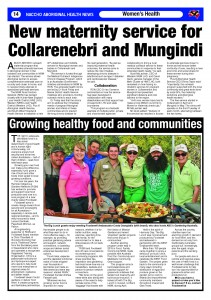 NACCHO Foodswell article June 2015