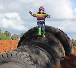 'Mum, everyone should have a tyre-bug', inspiration for Grong Grong's EarthPark
